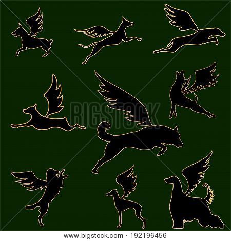 the collection of circuits of the flying dogs of different breeds