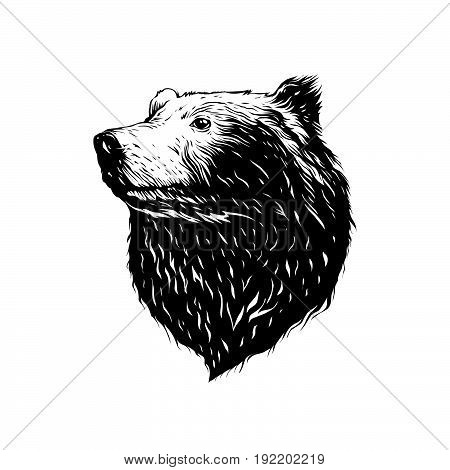 Clipart picture of the bear logo logo head bear eps 8