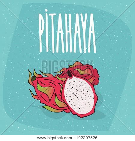 Isolated Ripe Pitaya Or Pitahaya Or Dragon Fruit
