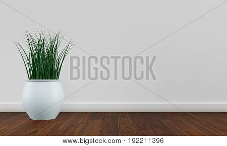 White wall interior with plant vase on dark wood floor. 3d rendering