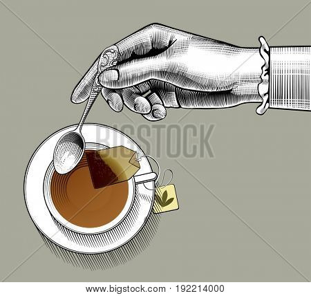 Woman's hand with a tea cup and spoon. Vintage stylized drawing