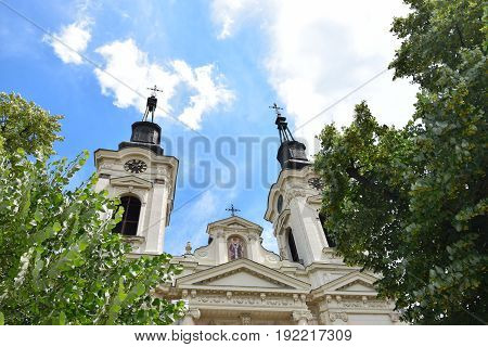 Steeples of the Orthodox Cathedral of St. Nicholas behind the lush crown of a lime tree