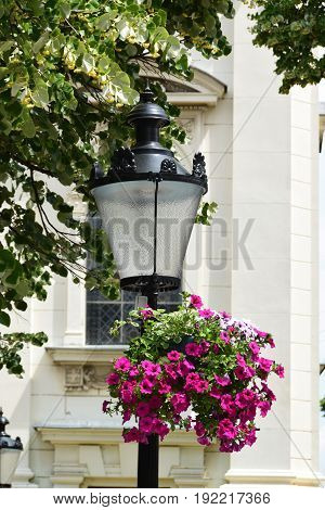 Lantern-like street lighting with hanging flower pots full of Petunias