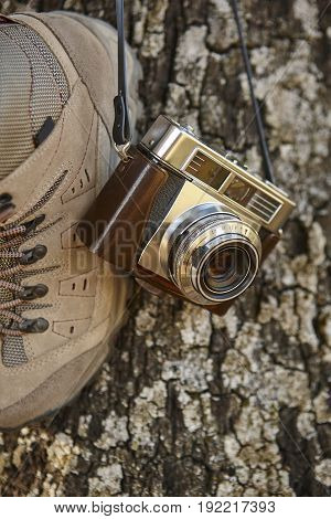 Vintage camera with hiking boots and tree trunk. Travel background