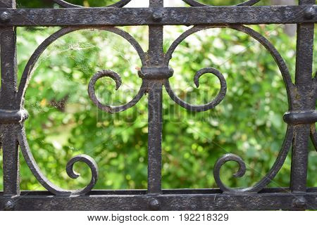 Old fence made of wrought iron, with a park in the back