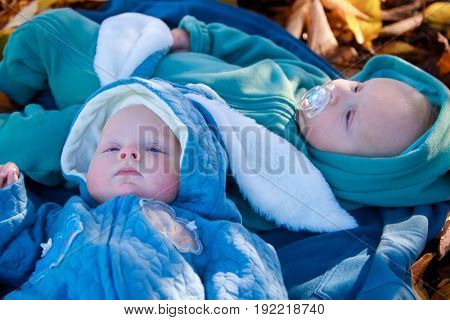 outdoor portrait of two young baby twins