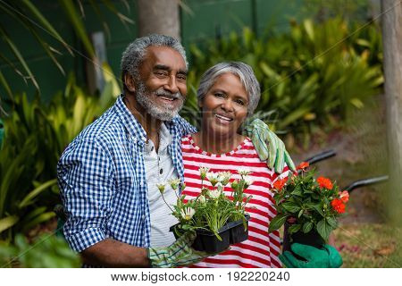 Portrait of smiling senior couple standing together while holding plants in backyard