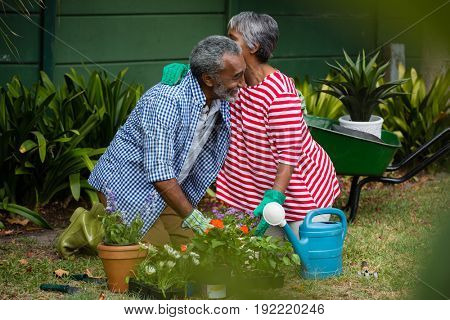 Happy senior couple embracing while kneeling together on field in backyard