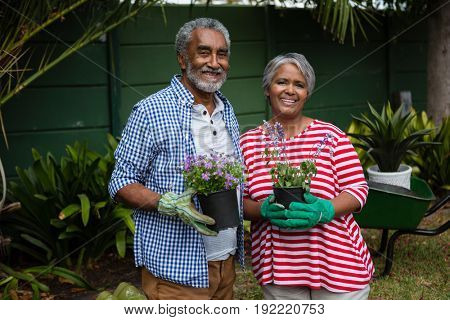 Portrait of smiling senior couple holding plants while standing together in backyard