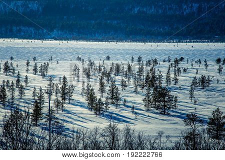 A Beautiful White Landscape Of A Frozen Swamp With Some Trees And Mountains In The Distance