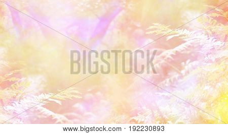 Magical Heavenly Woodland - Dreamy golden peach and pink  ethereal woodland background with soft focus trees in the background and ferns in the foreground