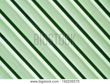 Green Color Pvc Siding Wall.