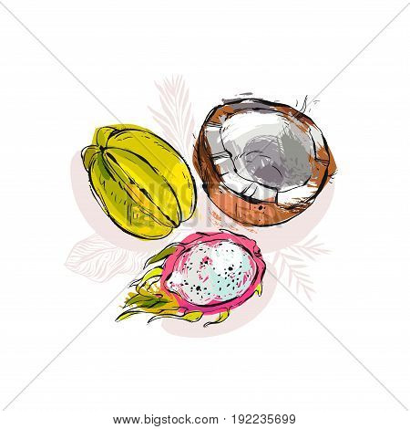 Hand drawn vector abstract artistic unusual tropical composition with exotic fruits coconut, papaya, carambola , dragon fruit and palm leaves isolated on white background.