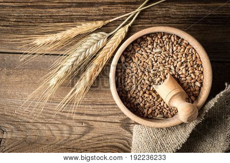 Ears Of Cereals And Bowl Of Grain.