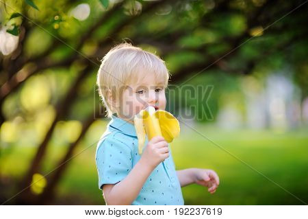 Beautiful Little Boy Eating Banana During Picnic In Summer Sunny Park