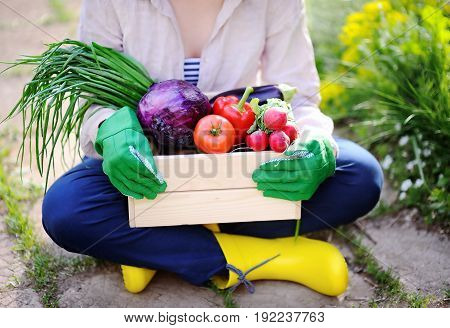 Gardener Holding Wooden Crate With Fresh Organic Vegetables From Farm