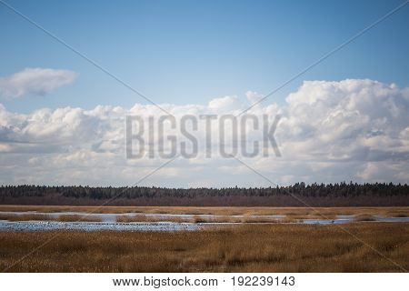 A Beautiful Early Spring Landscape With A Lake