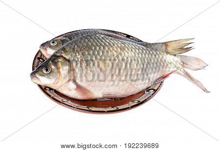 Two carassius - crucian carp on a platewhite background