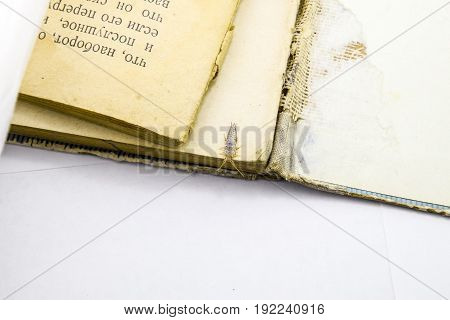 Pest Books And Newspapers. Insect Feeding On Paper - Silverfish