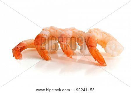 Close-up image of shrimp studio isolated on white background