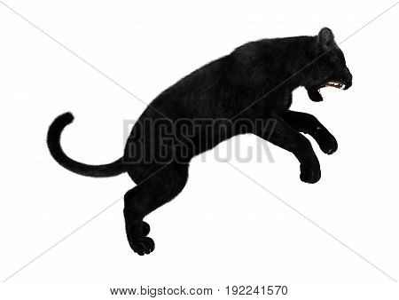 3D rendering of a big black panther hunting isolated on white background