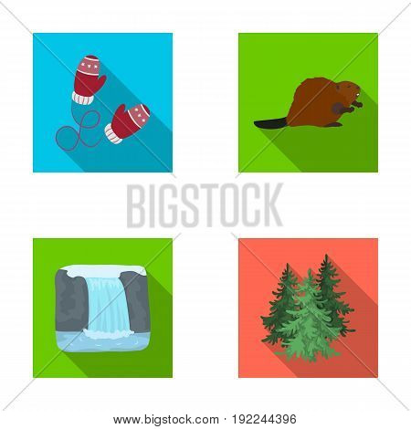 Canadian fir, beaver and other symbols of Canada.Canada set collection icons in flat style vector symbol stock illustration .