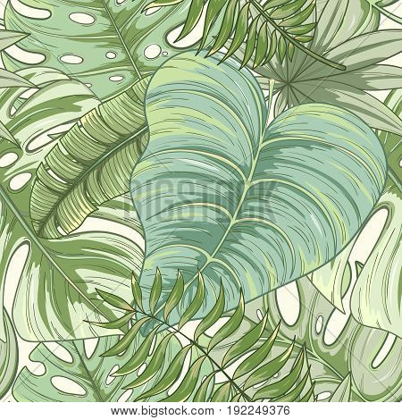 Seamless tropical palm leaves pattern. Summer endless hand drawn vector background of areca palm, banana leaves, monstera, fan palm can be used for wallpaper, wrapping paper, textile printing