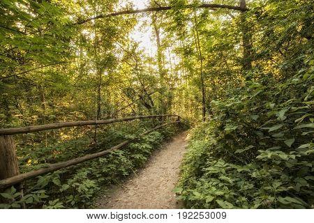 Roztocze (Roztochia) National Park. Tourist path near cascades on Sopot river. Czartowe Pole (Devil's Field) reservation.