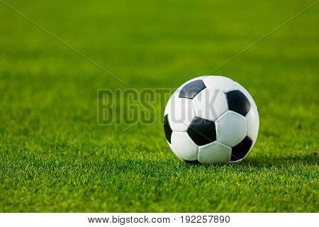 Ball field soccer football game sport green