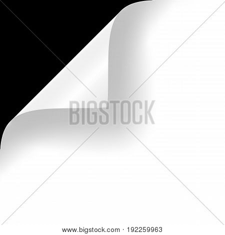 Curly Page Corner realistic illustration with transparent shadow. Ready to apply to your design. Graphic element for documents, templates, posters, flyers. Vector illustration