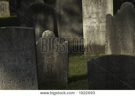 Cemetery Study