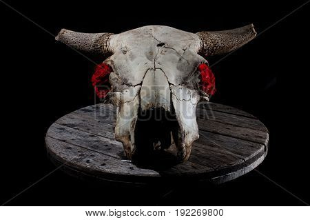 Cow skull decorated with roses, laying on a grey wooden plate, with strong biker / rock n roll / goth vibes.