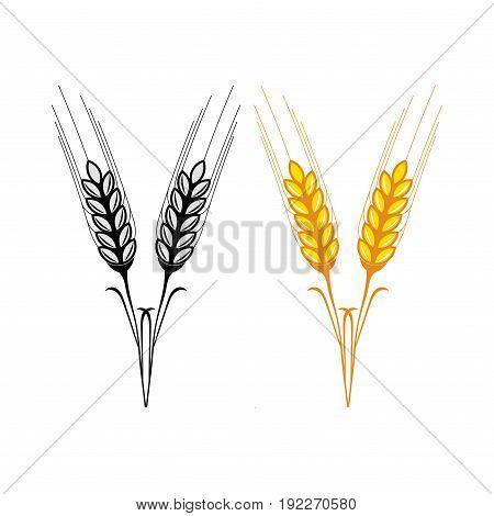 wheat ears icon golden grain fully editable image
