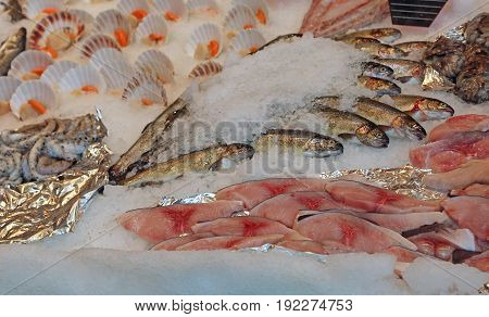Raw Fishes Over The Ice For Sale