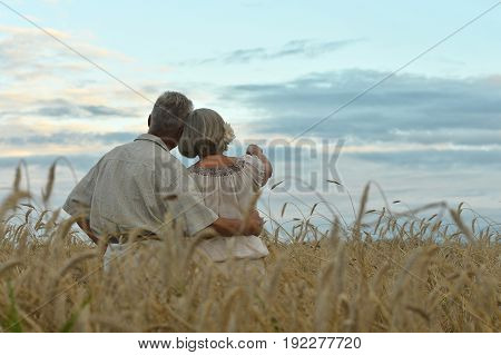 Happy senior couple on field of wheat