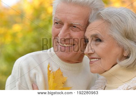 Portrait of beautiful senior couple posing   in the park