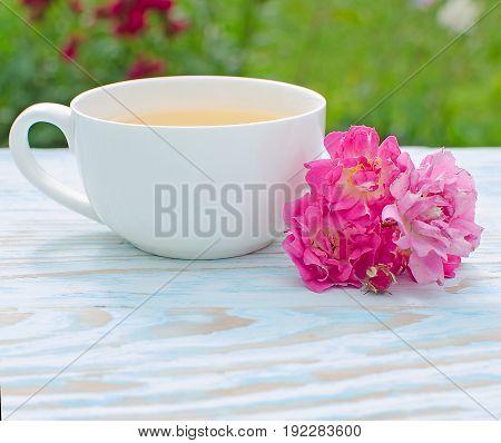 Fragrant Hot Tea Roses