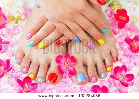 Feet hands manicure pedicure cure background colorful