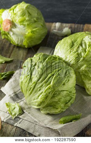 Raw Organic Round Crisp Iceberg Lettuce