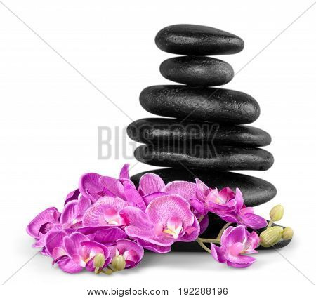 Flowers stones zen group background small closeup