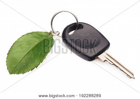 Green key leaf car shiny concepts nature