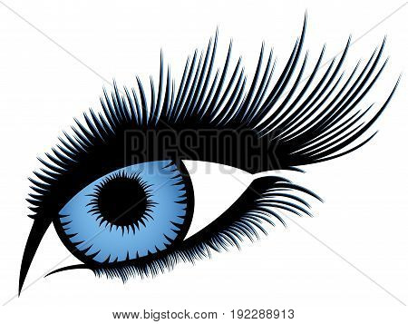 Abstract human eye with long eyelashes and with blue gradient iris vector illustration over white
