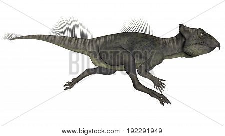 Archaeoceratops dinosaur running isolated in white background - 3D render