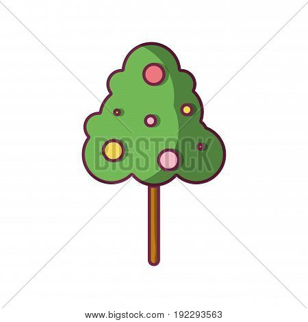 natural tree with fruits botany icons vector illustration