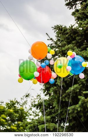 Multicolored Balloons Against The Background Of A Cloudy Sky