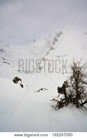 landscape in formazza valley during winter in italy