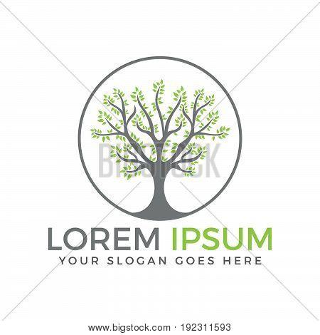 Green circle tree vector logo design .
