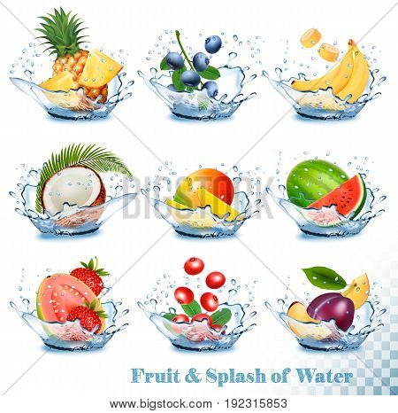 Big collection of fruit in a water splash. Pineapple mango banana pear watermelon blueberry guava strawberry coconut grawberry raspberry. Vector Set
