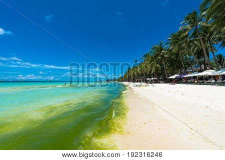 BORACAY, WESTERN VISAYAS, PHILIPPINES - MARCH 27, 2017: Wide angle view of the water with seaweed and coconut trees at White Beach.