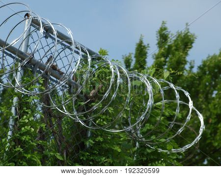 A row of razor wire hangs on a row of barbed wire to keep intruders out of a supply yard.